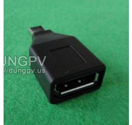 mini Displayport to Displayport adapter
